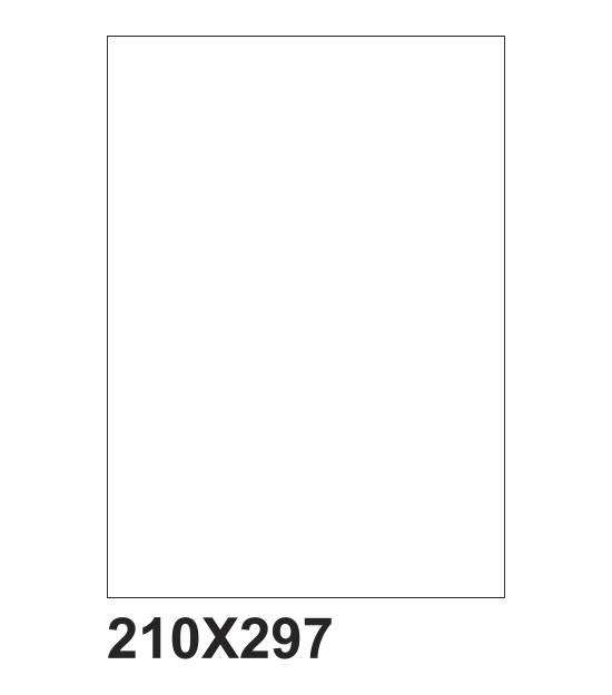 fogli A4 adesivi